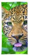 The Leopard's Tongue Beach Towel