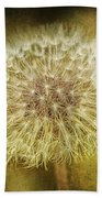 The Lion's Tooth Beach Towel