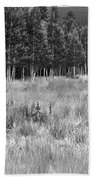 The Meadow Black And White Beach Towel