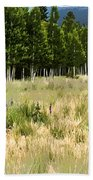 The Meadow Digital Art Beach Towel