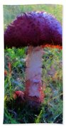 The Monet Trip  Beach Towel