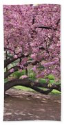The Most Beautiful Cherry Tree Beach Towel
