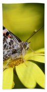 The Painted Lady And The Daisy  Beach Towel
