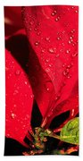 The Poinsettia Beach Towel