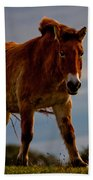The Przewalski Horse Equus Przewalskii Beach Towel