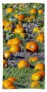 The Pumpkin Patch Beach Towel