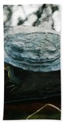 The Red Eared Slider Beach Towel