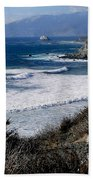 The Sea Squirrel Beach Towel