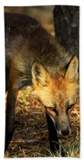 The Silent Approach Beach Towel