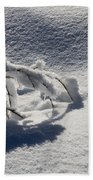 The Weight Of Winter Beach Towel
