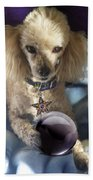The Wizard Of Dogs Beach Towel