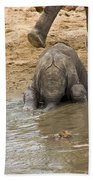 Thirsty Young Elephant Beach Towel