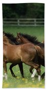 Thoroughbred Horses, Ireland Beach Towel