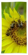 Three Bees Hunkering Down Beach Towel