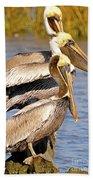 Three Pelicans On A Stump Beach Towel