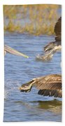 Three Pelicans Taking Off Beach Towel