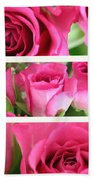 Three Pink Roses Landscape Beach Towel