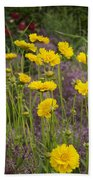 Tick Seed 2229 Beach Towel