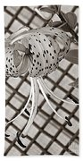 Tiger Lily And Rusty Gate Beach Towel