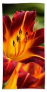 Tiger Lily0272 Beach Towel
