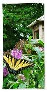 Tiger Swallowtail By The Bird Feeder  Beach Towel