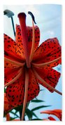 Tigerlily Beach Towel