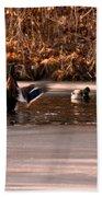 Time For Me To Fly Beach Towel by LeeAnn McLaneGoetz McLaneGoetzStudioLLCcom