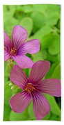Tiny Flowers In The Clover Beach Towel