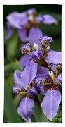 Tiny Purple Iris Beach Towel