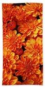 Toasted Orange Chrysanthemums Beach Towel