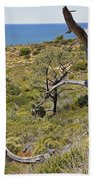 Torry Pines Sentinal Beach Towel