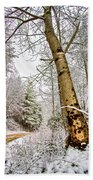 Touch Of Gold Beach Towel by Debra and Dave Vanderlaan