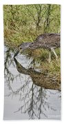 Touching Nose To Nose Beach Towel