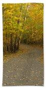 Trail Scene Autumn Abstract 3 Beach Towel