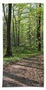 Trail Through Spring Forest Bavaria Beach Towel