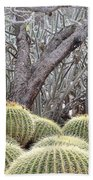 Tree And Barrel Cactus Beach Towel