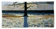Tree And Shadow Calke Abbey Derbyshire Beach Towel