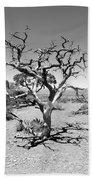 Tree At Cedar Ridge Bw Beach Towel