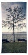 tree at lake Constance Beach Towel by Joana Kruse