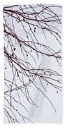 Tree Branch Nature Abstract Beach Towel