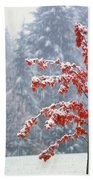 Tree In The Winter Beach Towel