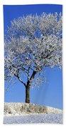 Tree In Winter, Co Down, Ireland Beach Towel