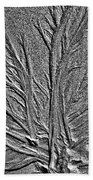 Tree Of Life In The Sands Of Time Hdr Conversion Beach Towel