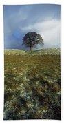 Tree On A Landscape, Giants Ring Beach Towel
