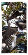 Tree Swallow - All Swallowed Up Beach Towel