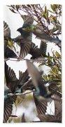 Tree Swallow Frenzy Beach Towel