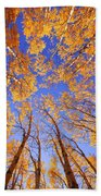 Tree Tops Beach Towel