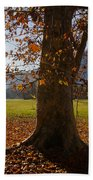 Tree With Autumn Leaves Beach Towel