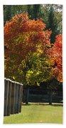 Trees In Autumn Beach Towel