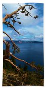 Trees On The Crater Beach Towel